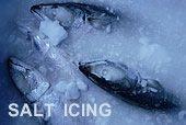 アイスマンのソルト・アイシング凍結技術