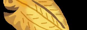 熱海(網代)の干物